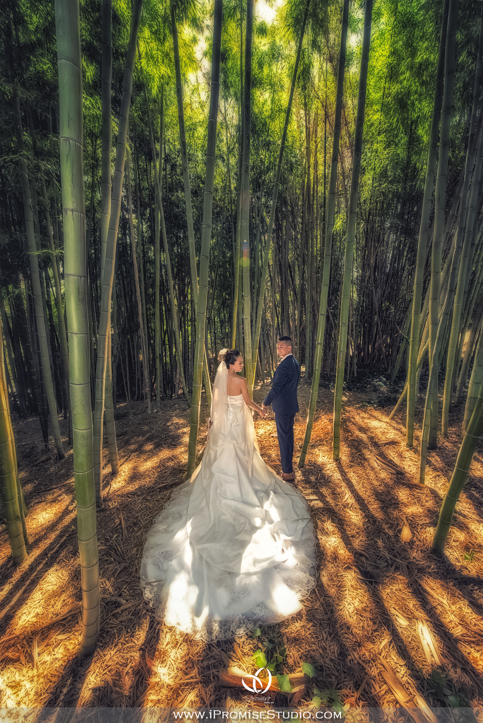 Arcadia Los Angeles County Arboretum and Botanic Garden Bamboo Field-engagement wedding 06.JPG