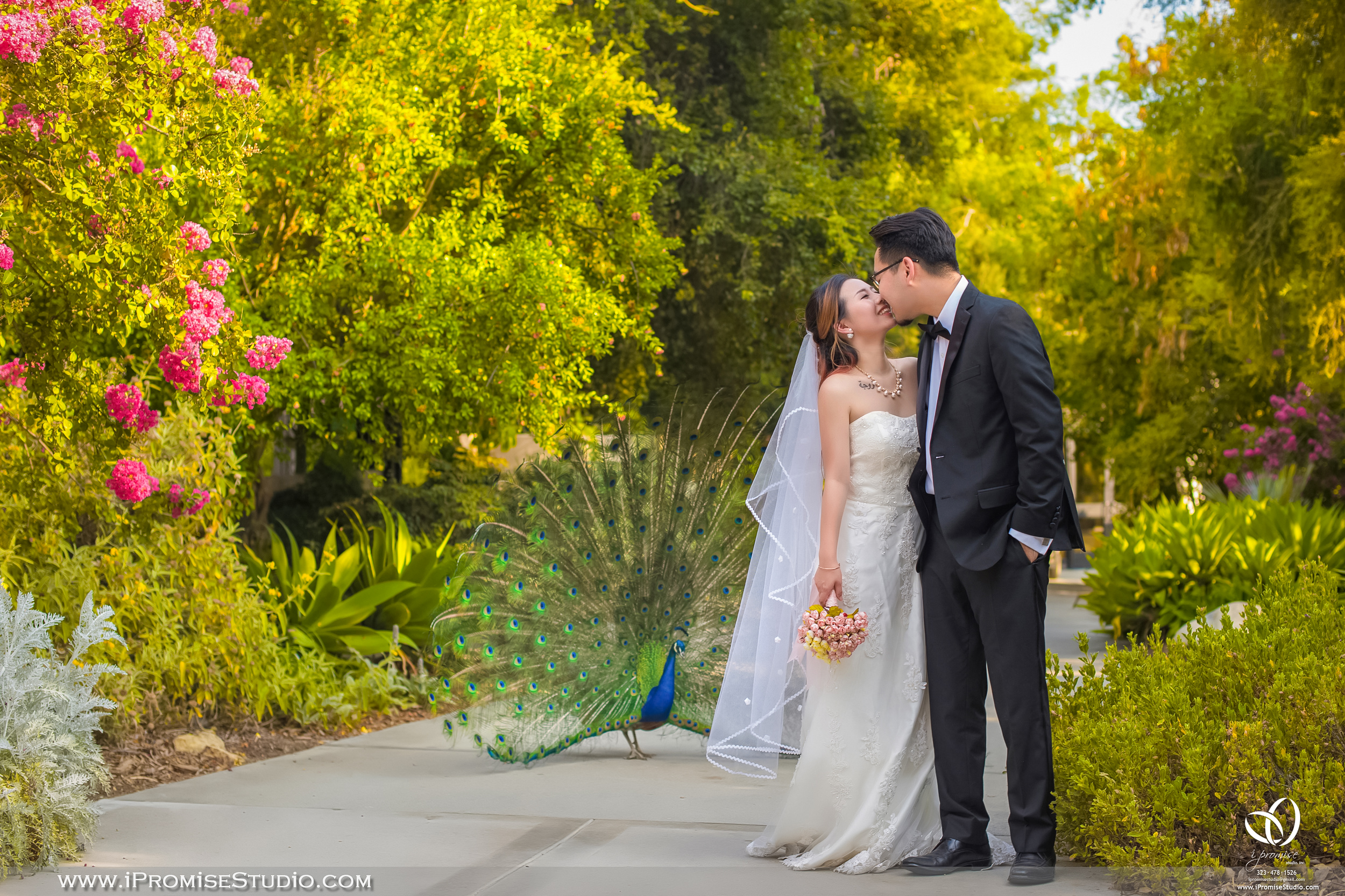 Arcadia Los Angeles County Arboretum and Botanic Garden Peacock-engagement wedding 05.JPG