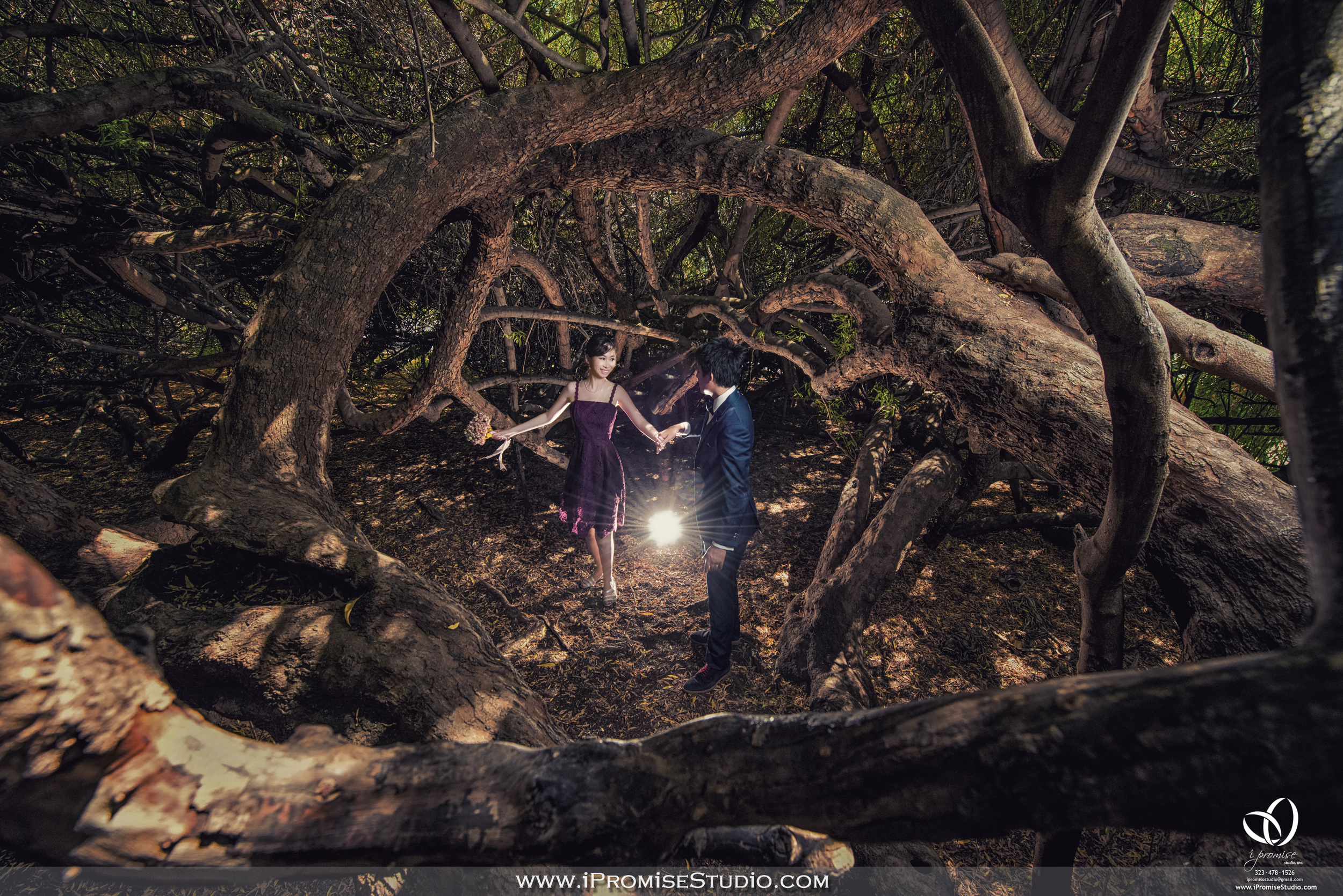Arcadia Los Angeles County Arboretum and Botanic Garden ungle Forest-engagement wedding 13.JPG