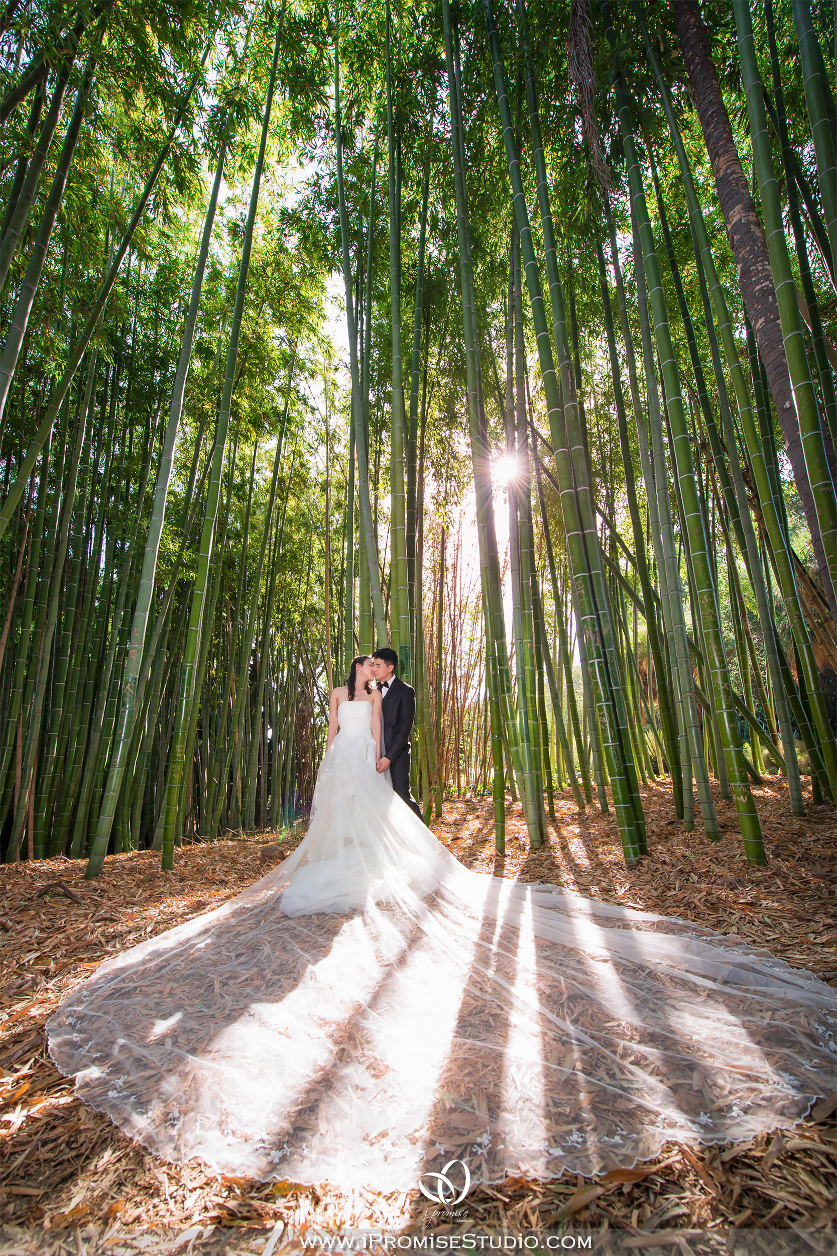 Arcadia Los Angeles County Arboretum and Botanic Garden-engagement wedding 01.JPG